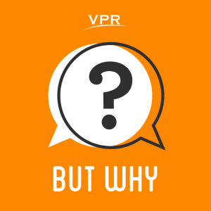But Why podcast logo
