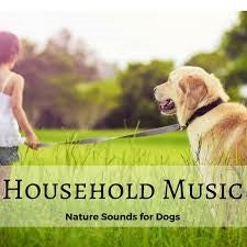 Household Music