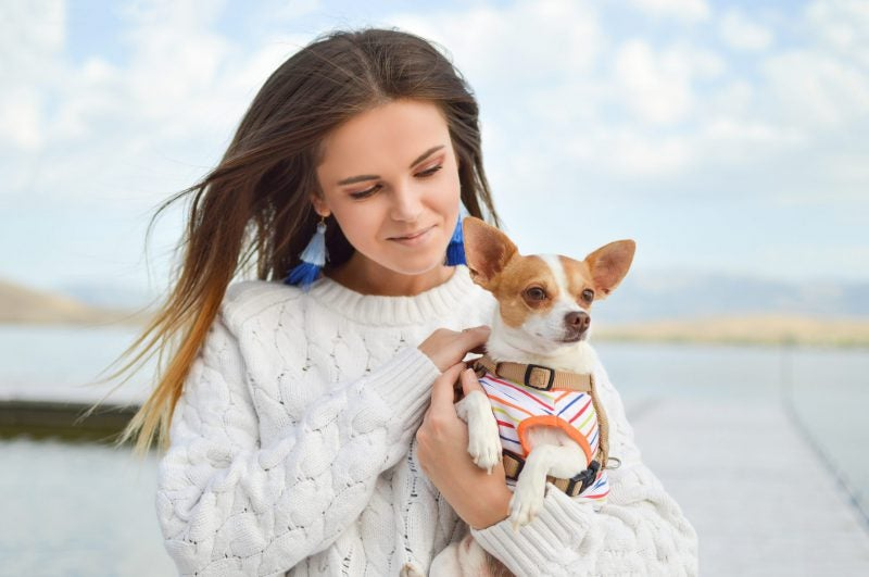 Woman holding a chihuahua dog
